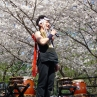 sakurasunday20130033