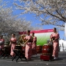sakurasunday20130043