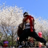 sakurasunday20130055
