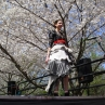 sakurasunday20130157