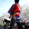 sakurasunday20130211
