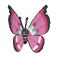 Vivillon Meadow