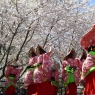 sakurasunday20130102